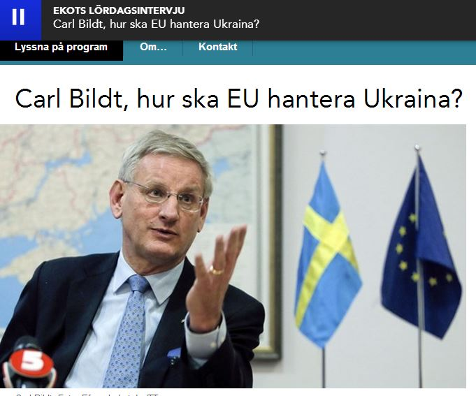 carl Bildt monica saarinen